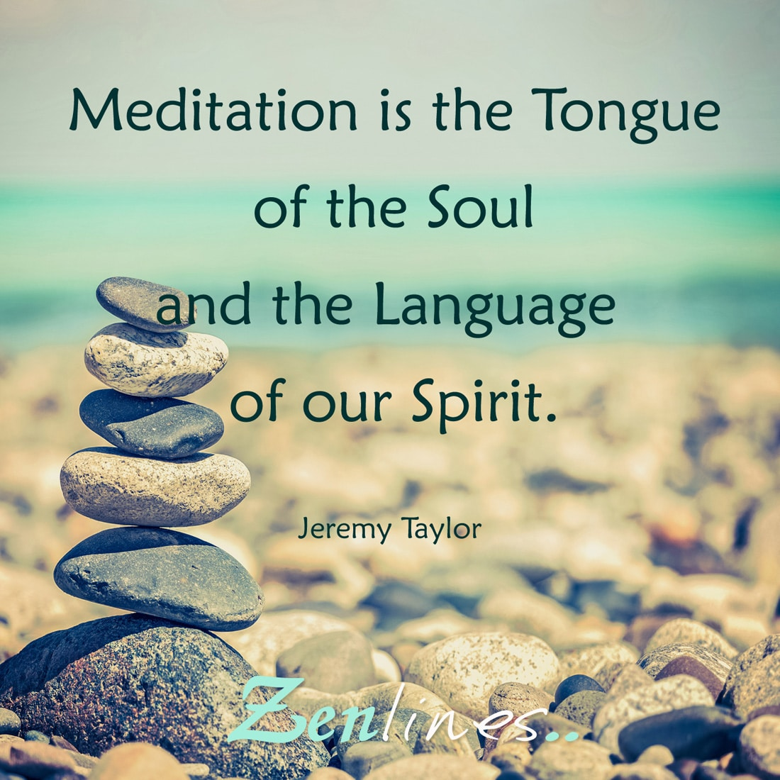 Meditation is the tongue of the soul and the language of our spirit.